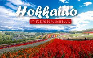 ท่องเที่ยว ฮอกไกโด เกาะสวรรค์ของคนรักธรรมชาติ