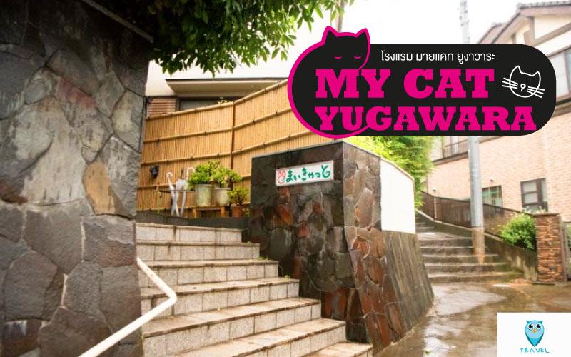 โรงแรม มายแคท ยูงาวาระ (My Cat Yugawara)