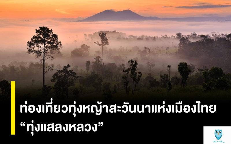 """ท่องเที่ยวทุ่งหญ้าสะวันนาแห่งเมืองไทย """"ทุ่งแสลงหลวง"""""""