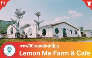 Lemon Me Farm & Cafe คาเฟ่มินิมอลสไตล์ญี่ปุ่น